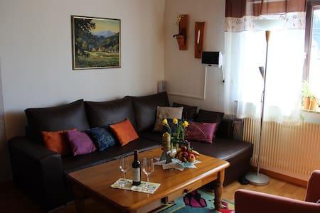 Haus Janssen-Wehrle - Titisee-Neustadt - Apartment