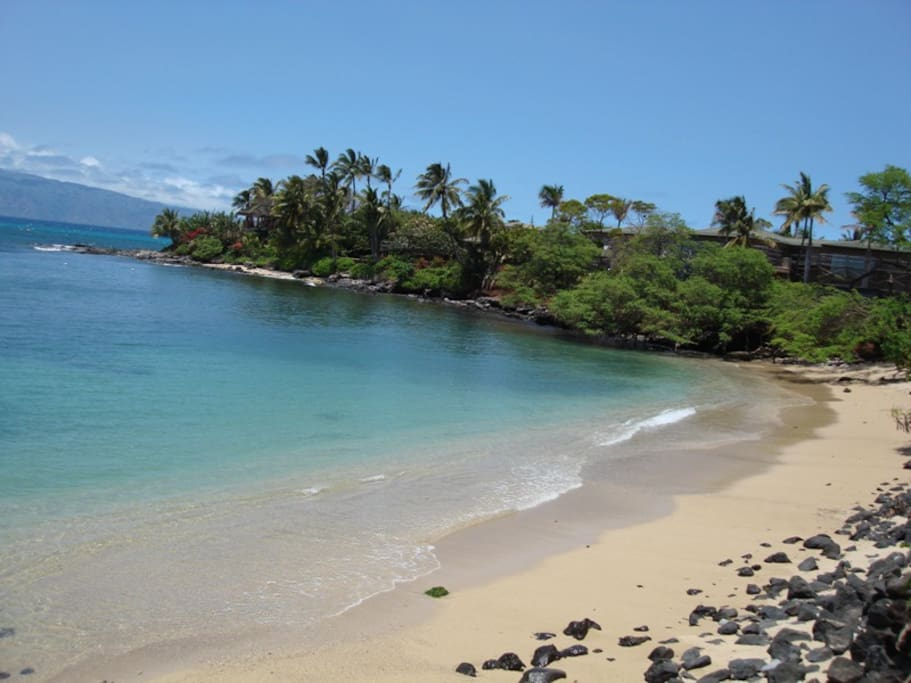 Stay with us literally steps from this amazing little beach between Kahana Beach and Napili Bay!