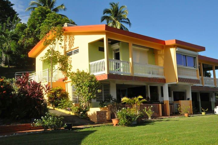 Martinique Nord verdure et calme