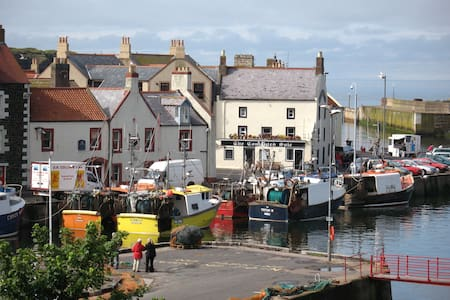 Apartment Right on the Harbour!   - Eyemouth - Daire