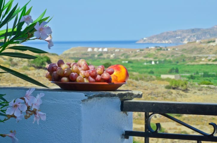 See Naxos Agricotourism & Nature 3 - Naxos - Wohnung