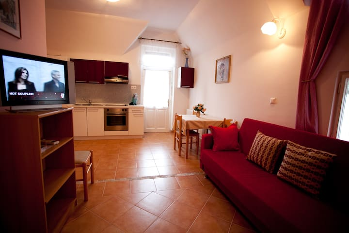 0ne bed room Apartment in Art Nouveau Villa - Bled - Appartement