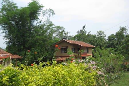 Relaxing  stay in Nilgiris - Gudalur, Nilgiris - Bed & Breakfast