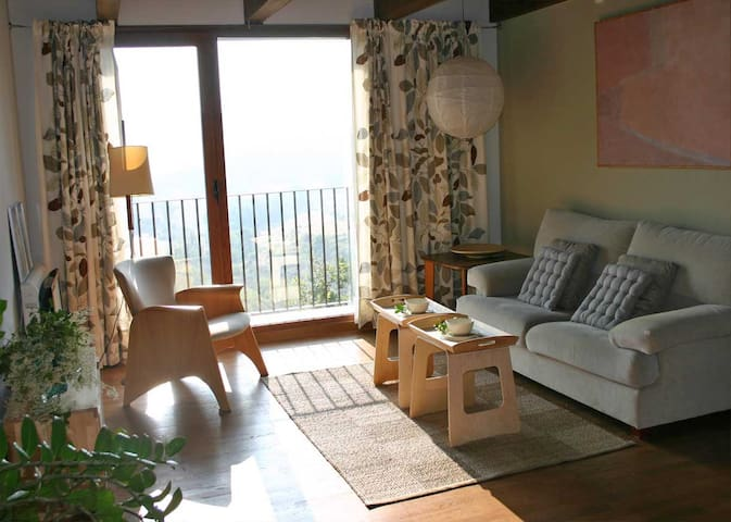 La Casa del Muro... Apartamento de Juana - Sos del Rey Católico - 公寓
