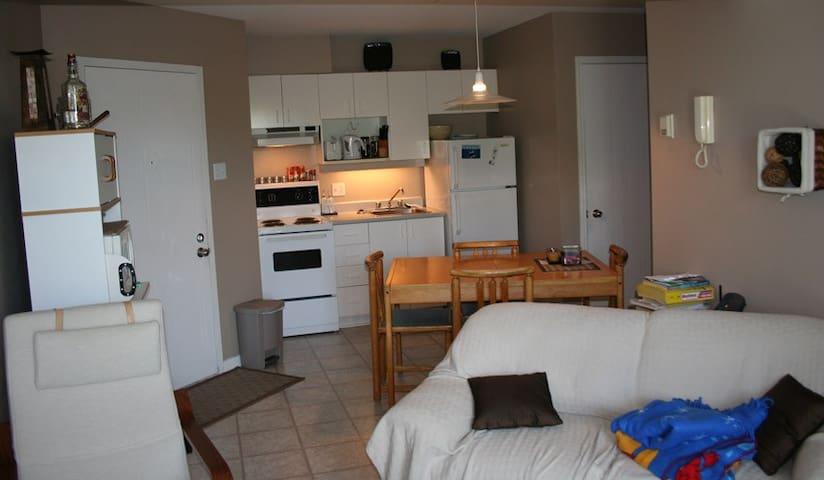 Appartement 3 ½  meublé incluant - Noisy-le-Roi - Apartemen