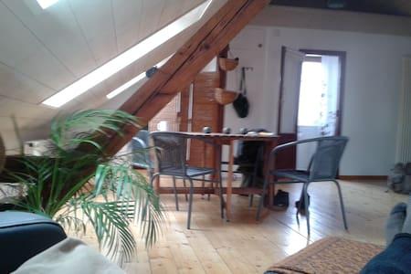 Loft-Dachwohnung