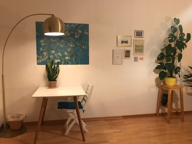 Cozy and big private room in central Munich