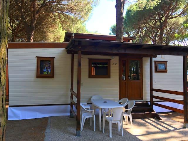Mobile Homes in Mare Pineta camping, Lido di Spina