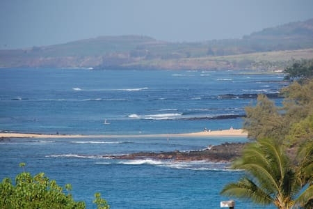 Let the Ocean put You to Sleep - Koloa