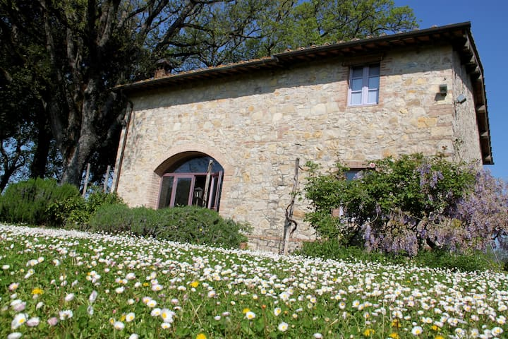 Country House in San Felice - San Felice - Casa