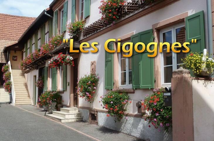 Les Cigognes - Hœrdt - Appartement