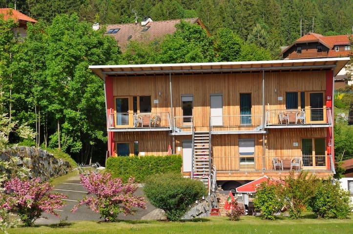 Wohnung Morgentau am Weissensee mit Privatstrand