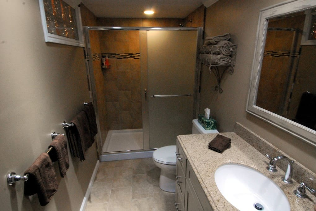 All new Master Bathroom with walk-in Shower