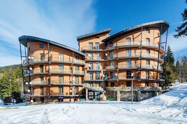 Duplex Apartment in Bakuriani - Bakuriani - Pis