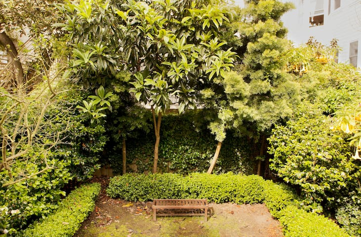 Green and tranquil backyard