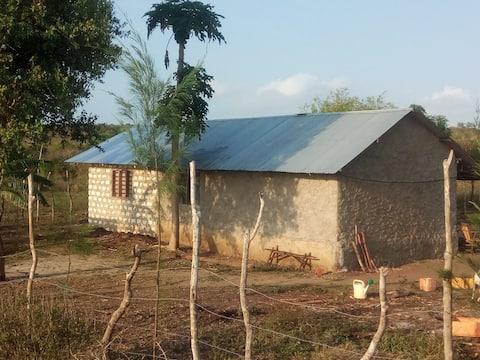 Bush Nest- A Farmhouse on the Edge of Civilization