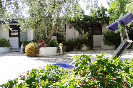 B&B Masseria Liberatore Mattinata - Mattinata - Bed & Breakfast