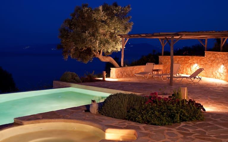 Villa Anatoli Seafront Luxury Villa - Apollonioi - Vila
