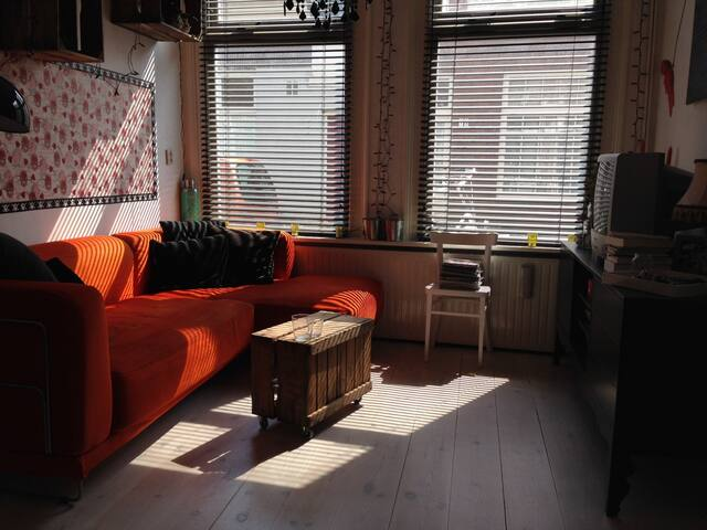 Private city apartment with garden - Haarlem - Haus