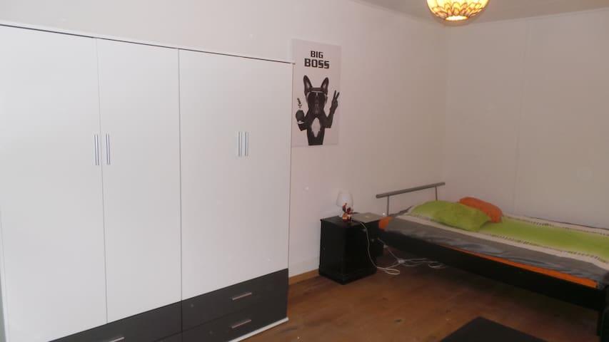 Une très spacieux +25 m2 avec lavabo. - Châtel-Saint-Denis - Gästhus