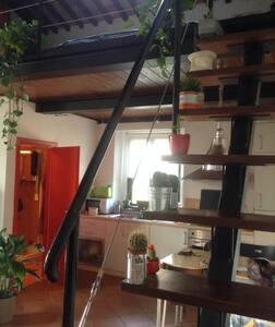 Ampio loft con soppalco in Suvereto - Suvereto