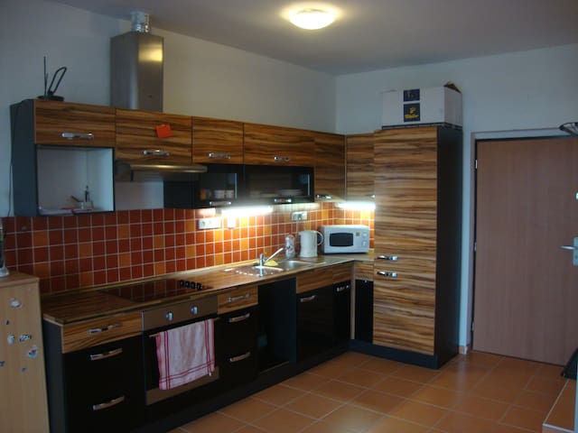 Lovely flat in the town centre - Brno - Apartamento