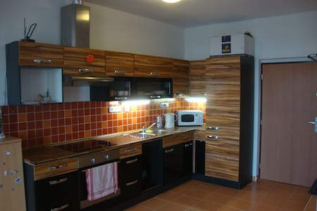 Lovely flat in the town centre - Brno - Lejlighed