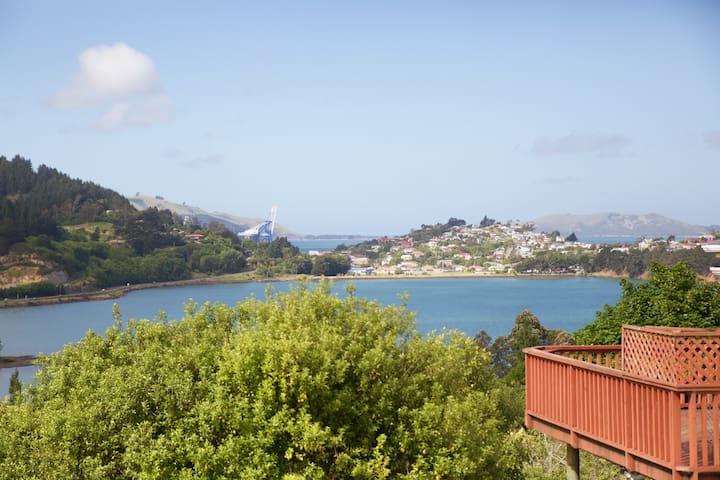 Seaviews Roseneath to Port, Dunedin - Roseneath