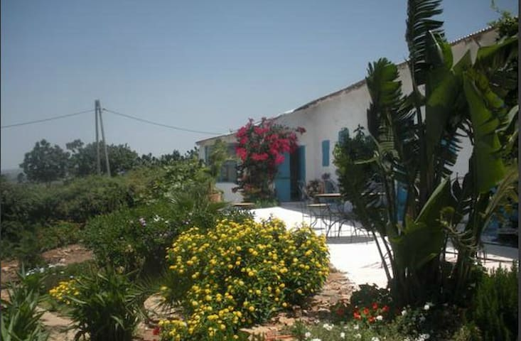 Darjenna, maison d'hôtes de charme. - Tangier - Bed & Breakfast