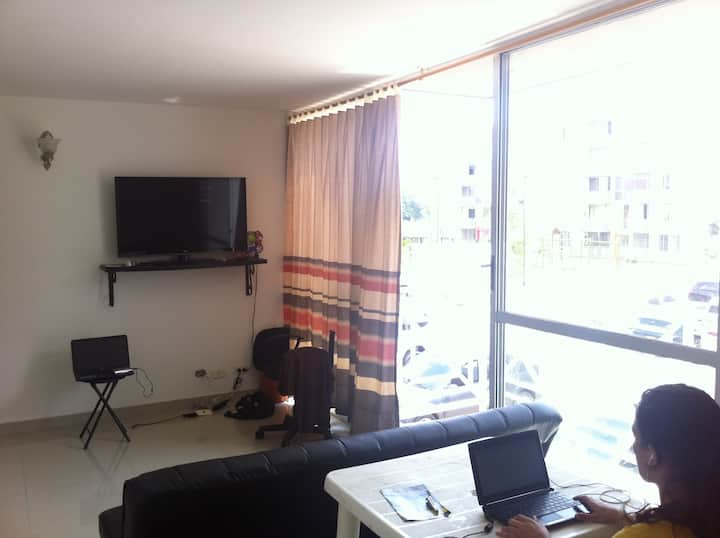 Nice Room in a Nice Apartment