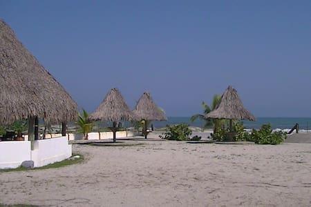Villa on Caribbean beachproperty  - La Ceiba - House