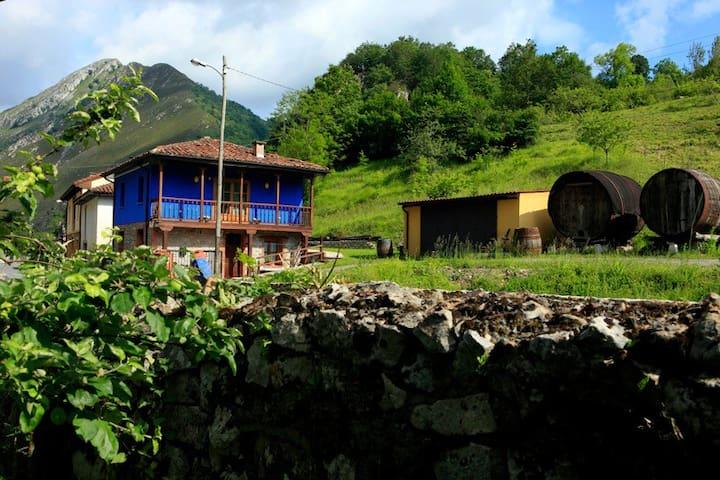 Romantic Cottage Picos de Europa - Cangas de Onís - House