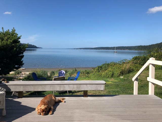 Whidbey beach house, quiet, dogfriendly, open now!