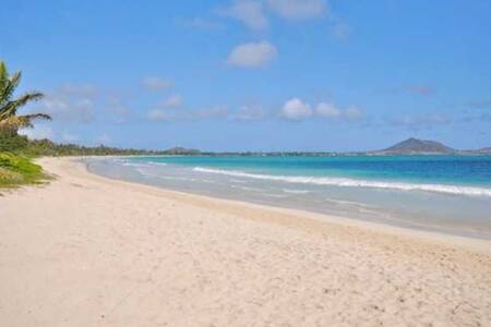 Kailua & Lanikai Beach Steps Away+King Bed+AC+BBQ