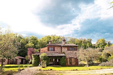 Casale immerso negli ulivi con piscina e bbq