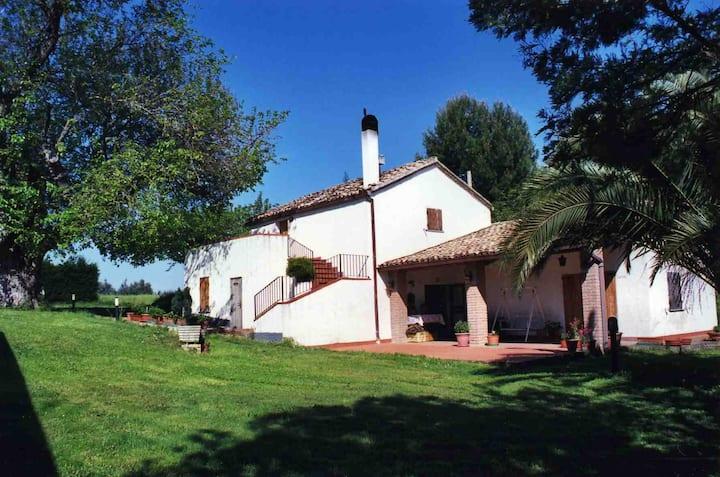 Trabocchi coast: Elissa house