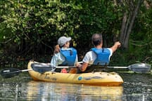 Kayaking down the wild and scenic Loxahatchee River. Receive the kayaks from Jupiter Outdoor Center.