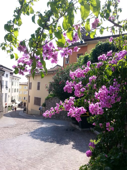 Via Pontalti