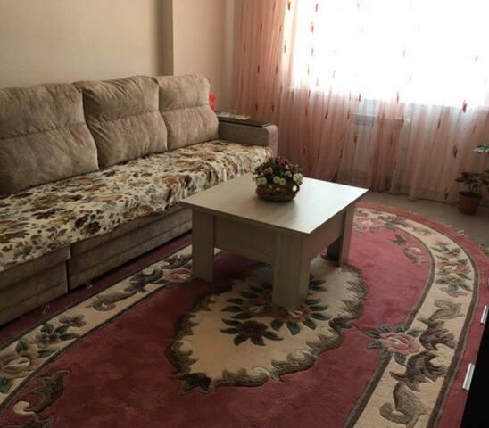 Квартира 2 х комнатная недалеко от аэропорта