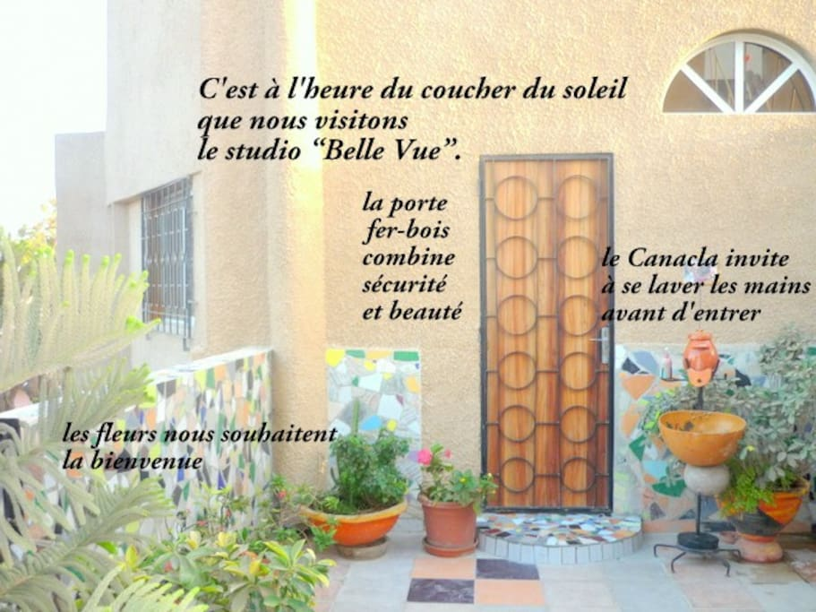 Vue sur la porte d'entrée du studio et sur une partie de la terrasse fleurie.