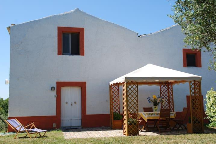 Trabocchi coast: Fiorina house - San Vito Chietino - Hus