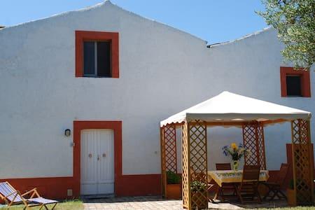 Trabocchi coast: Fiorina house - House