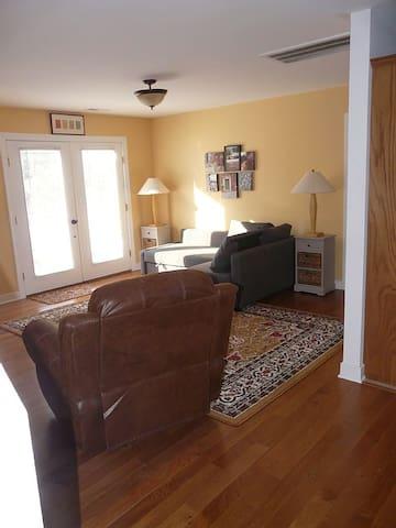 Living room w/ fold out sofa & storage