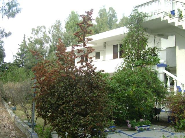 Ωραίο διαμέρισμα δίπλα στη θάλασσα - Agios Serafim - Condominium