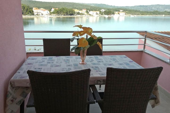 One bedroom apartment near beach Veli Rat, Dugi otok (A-11525-b)