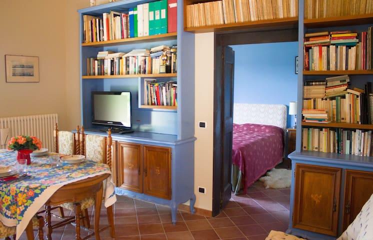 Salotto con tv, libreria, vista sulla camera da letto.