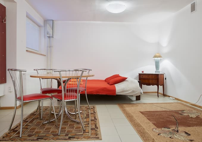 Perfectly located studio appartment - Vilnius - Lejlighed