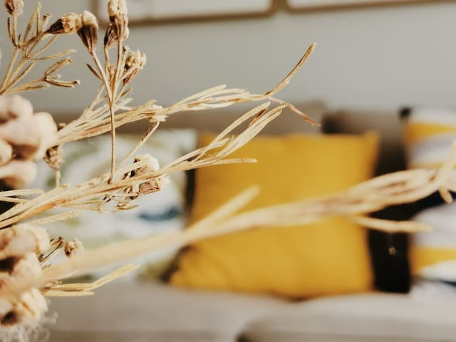 【NAP+】近深圳北站/福田CBD/大型购物广场/网红ins北欧风/ 吃喝玩乐齐全/高性价比优选民宿