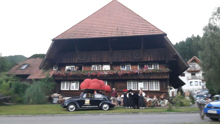 Ferienwohnung Farrenkopfblick - Gutach (Schwarzwaldbahn) - Pis