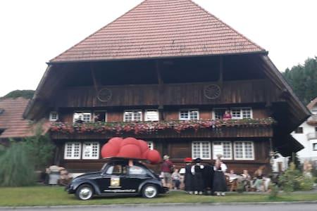 Ferienwohnung Farrenkopfblick - Apartment